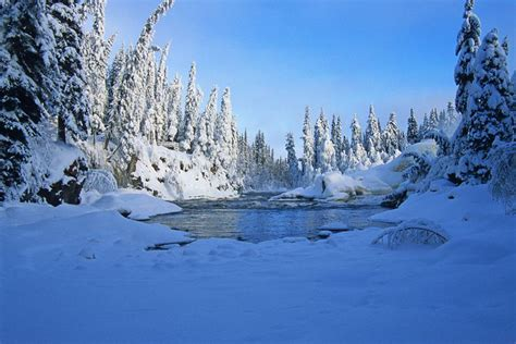 boreal forest winter fiddlers mountains nature landscape