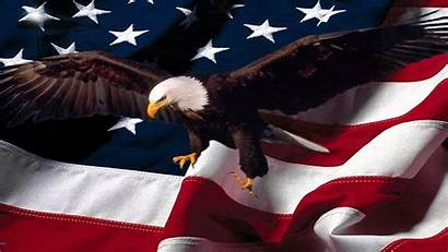 Eagle Memorial Flag American Happy Quotes Wallpapers