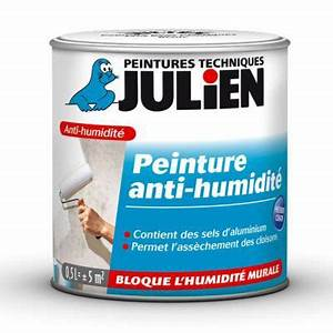 Anti Humidité Mur : peinture anti humidit int rieur julien 0 5l castorama ~ Edinachiropracticcenter.com Idées de Décoration