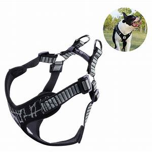 Dog No Pull Harness For  5 12  U2013  7 04 Shipped   Reg  Price