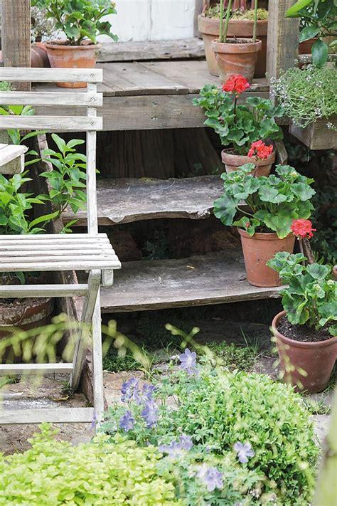 กระถางดอกไม้   กระถางดอกไม้, สวนขนาดเล็ก, สับปะรดสี