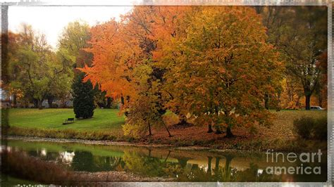 my favorite color is october my favorite color october photograph by beverly guilliams