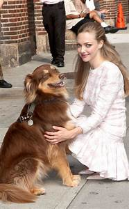 289 best images about Amanda Seyfried... on Pinterest ...