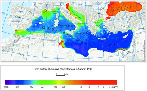 Sea Surface Chlorophyll Concentration