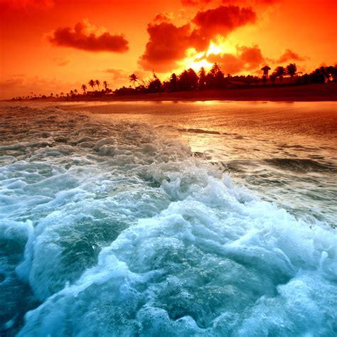 wallpaper sunset beach  nature
