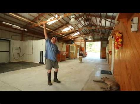 morton horse barn youtube