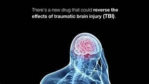 Isrib Reverses Memory Failure From Traumatic Brain Injury