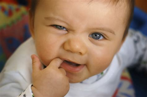 Signs Of Teething Molars How To Adult
