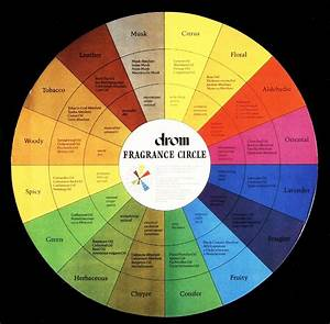 Essential Oil Wheel