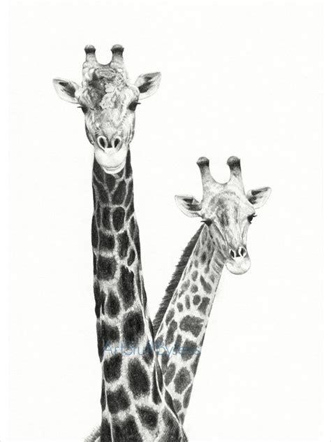 giraffe drawings jpg