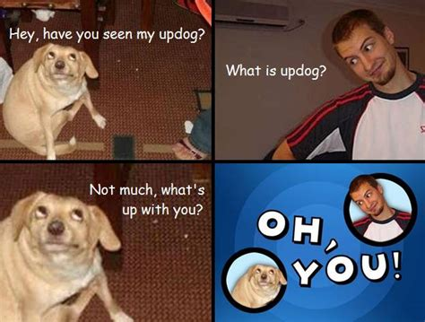 Oh You Dog Meme - oh you the hilarious oh you meme