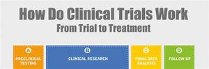 how do clinical trials work from trial to treatment With how to get a job in clinical trials