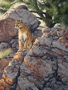 Cougar | Puma | Mountain lion painting by Cliff Rossberg ...