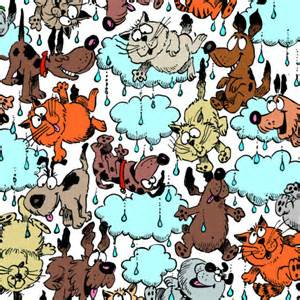raining cats and dogs it s raining cats and dogs definition origin exles