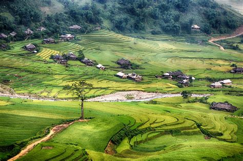 Mu Cang Chai – Paradise of Rice – Travel information for