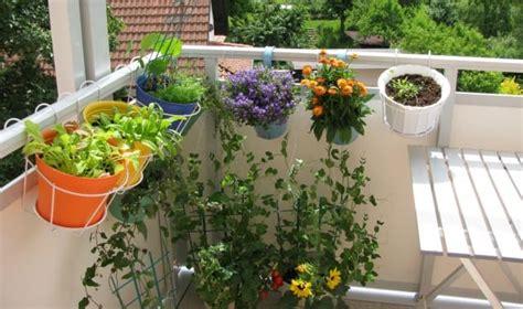 l orto in terrazza come coltivare l orto in casa non specare