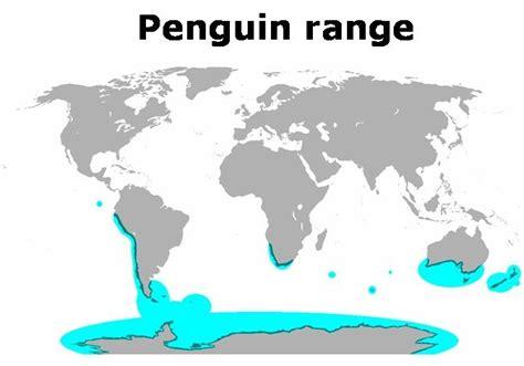 penguins   garden  eaden