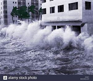 Hurricane Winds And Storm Surge Waves Blow Palm Trees And