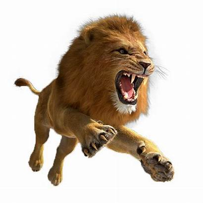 Lion Clipart Leaping African Leon Tiger Transparent