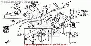 Honda Z50j Monkey 1982  C  Finland Wire Harness  Battery   Ignition Coil