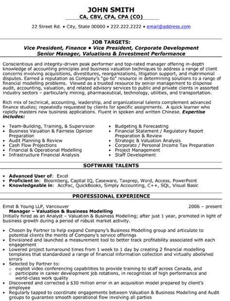vice president  finance resume template premium resume