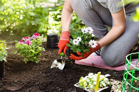 Arbeiten Im Garten Im Herbst by Jardin Fleurs De Printemps Au Meilleur Prix