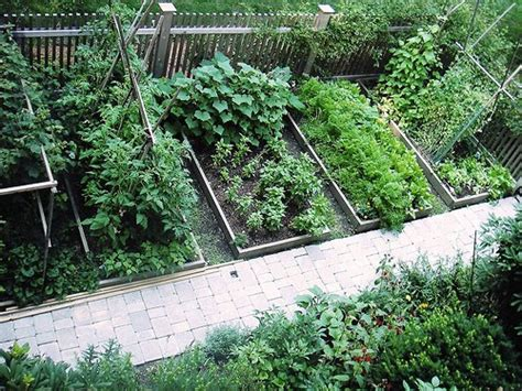 home decorations backyard vegetable garden design