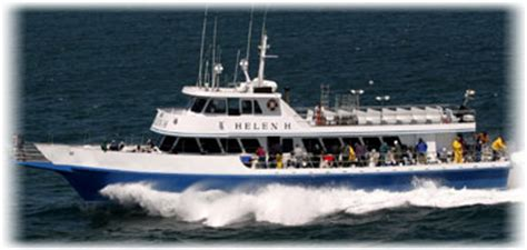 Charter Boats Cape Cod  Fishing Charters Cape Cod Deep