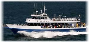 Cape Cod Deep Sea Fishing - Party Boat & Charter Boats