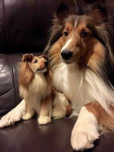 1075 best Collie collectibles images on Pinterest | Collie ...