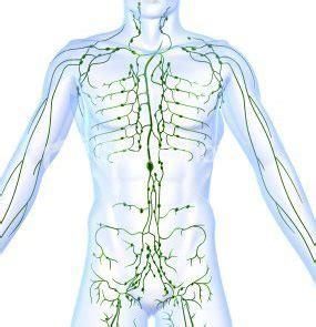 Pijn in linker onderbuik en rug