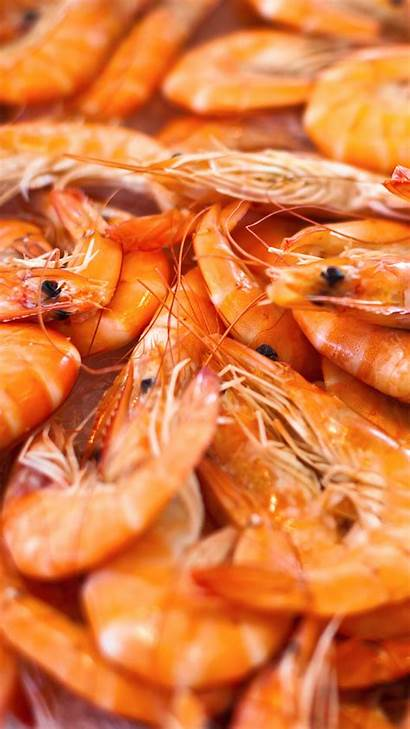 Shrimp Wallpapers Dishes