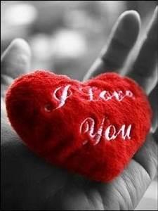 Afiq Principle: Cinta ♡ Bukan Sekadar Lafaz