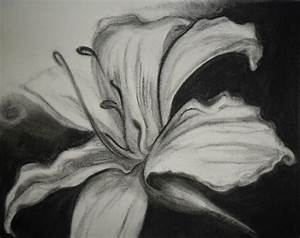 Flower Drawings in Black and White | Many Flowers