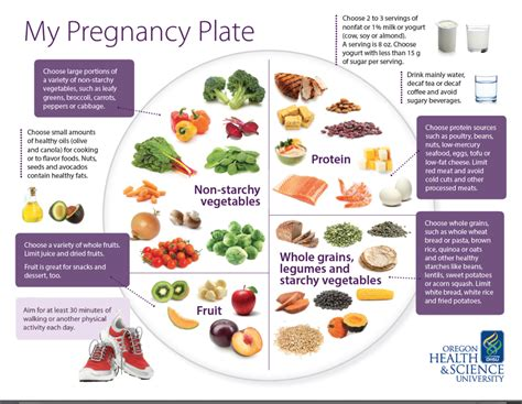 pregnancy plate healthy during eating pregnant nutrition blueprint