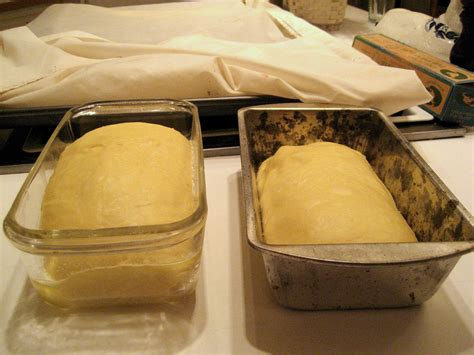 yeast bread baking powder pan proofing difference between loaf dough pans before vs oven bake rise glass rising box experiment