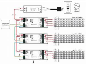 Constant Voltage Dali Dimmer Sr