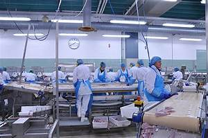 FDA's guidelines for 'Current Good Manufacturing Practices ...
