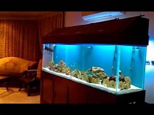 Liter Aquarium Berechnen : 1000 liters aquarium youtube ~ Themetempest.com Abrechnung