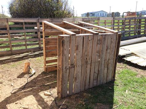 diy easy  goat house  pictures  life  heritage