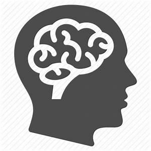 Brain, education, human head, learning, man, mind ...
