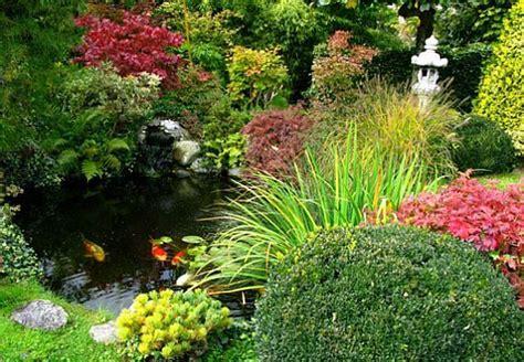 Japanischer Chinesischer Garten Pflanzen by Japanische Ecke Im Garten