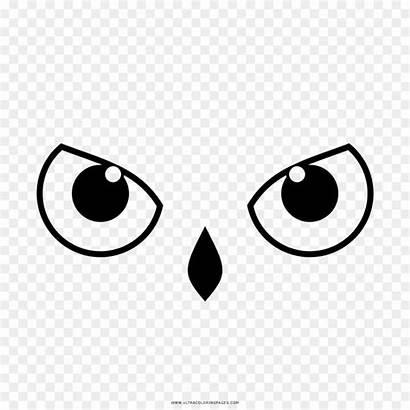 Owl Eyes Coloring Clipart Coruja Olhos Eye