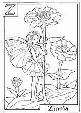Flower Zinnia Drawing Coloring Letter Getdrawings sketch template