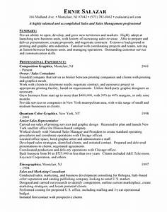 sle of a great resume 28 images sales manager resume With great sales resume