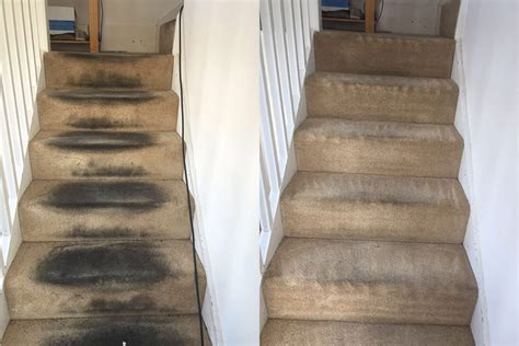Best Carpet Shampooer For Stairs How To Install A Carpet Runner On Steps Red Looks Guys Long Lace Dresses Much Do They Charge For Cleaning Emkos Service Bartlett Il Does Coit Above The Rest Reviews Steam Services