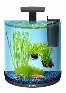 Tetra Aquaart Explorer Line : tetra aquaart explorer line krebs aquarium komplett set 30 liter mini ~ Watch28wear.com Haus und Dekorationen