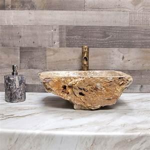 Petrified, Wood, Stone, Vessel, Sink, Bathroom