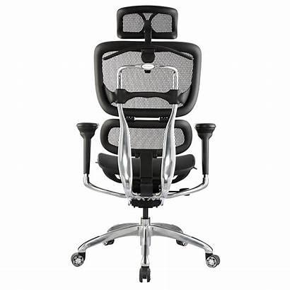 Chair Tech Hi Ergo Bodyline Office Ikcon