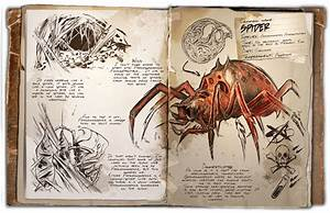 Araneomorphus Survive ARK